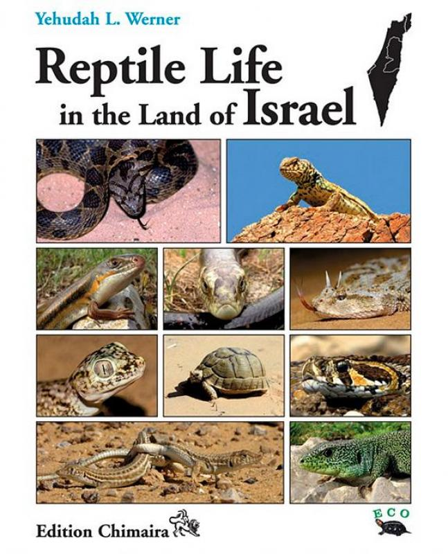 WERNER, Y.L.: Reptile Life in the Land of Israel