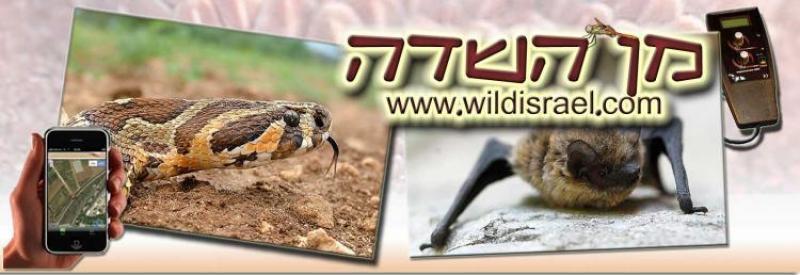 עמותת מן השדה לניטור מגוון המינים