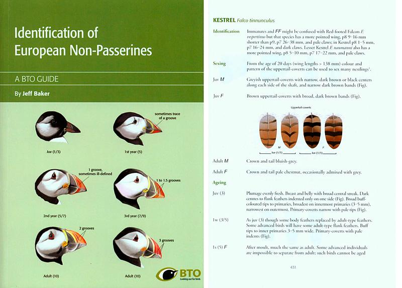 Identification of European Non-Passerines: A BTO Field Guide