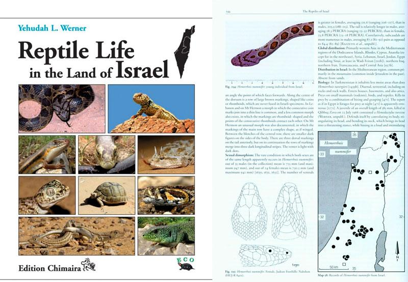 Yehudah L. Werner, Reptile Life in the Land of Israel